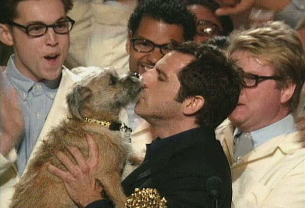 2013 MTV Movie Awards | Best Lip Locking Celebs - Ben Stiller and Puffy the Dog may have won Best Fight at 1999's MTV Movie Awards... but it seemed like the right time to kiss and make up.